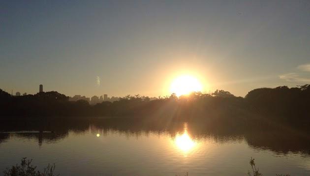 8 atividades gratuitas que você ainda não conhece no Parque Ibirapuera